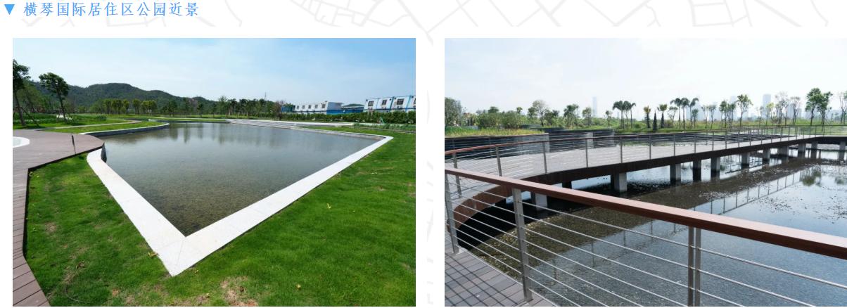 电建昆明院:为城市生态发展贡献力量,助力粤港澳大湾区可持续发展