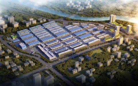 成为全国最大的蔬菜枢纽市场, 长沙黄兴海吉星5年华丽锐变