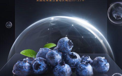 COLMO冰箱新道超车:营养冰箱或是高端冰箱市场发展新思路